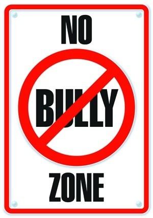 No Bully Zone image